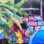 Unpowered-Camp-Sites-Daintree
