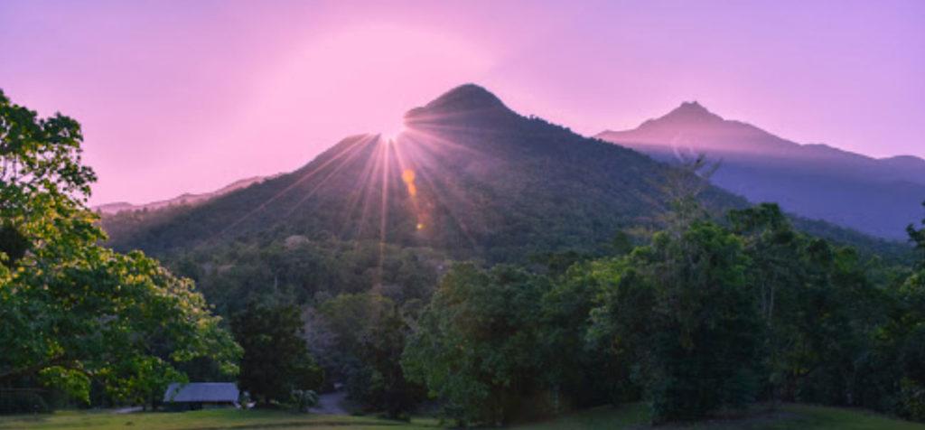 Daintree Rainforest Village Views