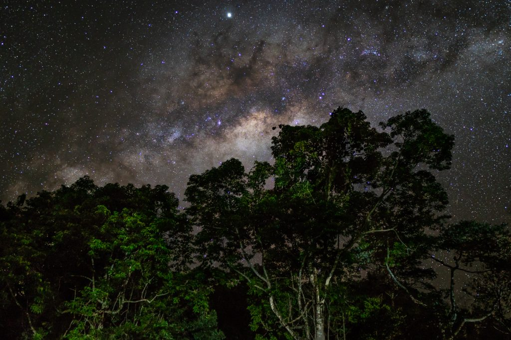 Daintree camping at Night. What is it Really Like.